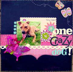 One crazy dog!