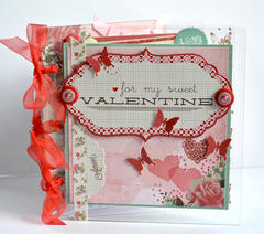 Clear Scraps acrylic Mini album by Pinky