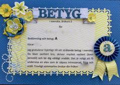 Swedish Diploma