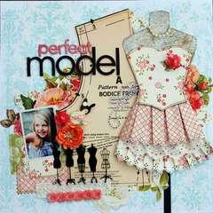 Perfect Model