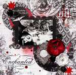 Enchanted *Scraps of Darkness*