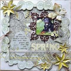 My Spring - my dog