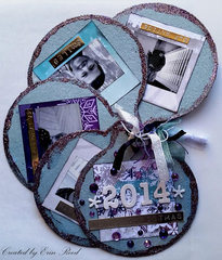 2014 Mini Books **Birds of a Feather & Imgaination Crafts**