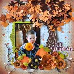 Lil Pumpkin *Prima*
