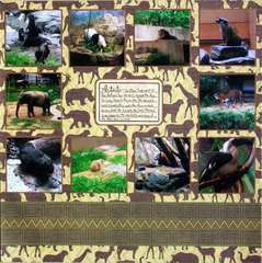 Washington DC 2012 - Page 44 - National Zoo: Title Page