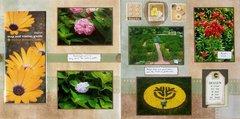 St. Louis 2013 - Botanical Garden Miscellaneous