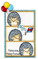 Hedgehoge Birthday card