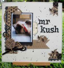 Mr Kush