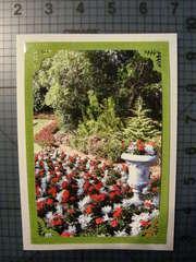 Photo Card -- Garden Scene