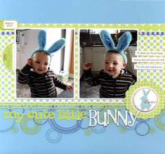 My Cute Little Bunny