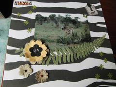 Kenya album: zebra