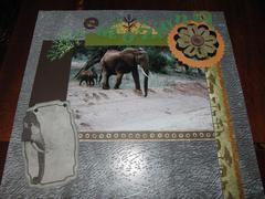 Kenya album: elephant