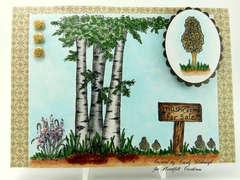 Morel Mushroom Card