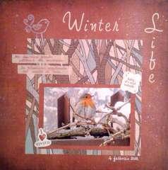 Winter Life....