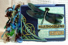 Dragonfly Dreams Album