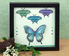 Butterfly Shadowbox by Holly Craft
