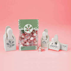 Holly Treat Bag Designed By Martha Stewart Crafts