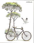 LaBlanche Scenic Bicycle