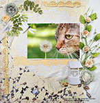 Escape Kitty -Wishing- Scraps Of Elegance Blog Hop