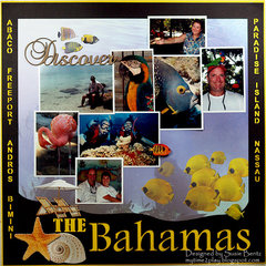 Discover The Bahamas  **Paper House**