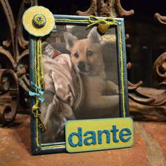 Doggie Frame