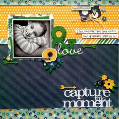 Capture This Moment *Simple Stories*