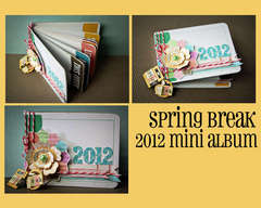 Spring Break 2012 Mini Album (Hybrid)