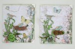 Bird and Butterfly Cards