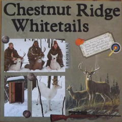 Chestnut Ridge Whitetails
