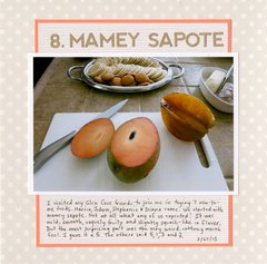 43 New-to-Me: #8 Mamey Sapote