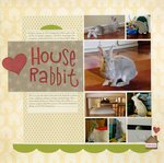 House Rabbit