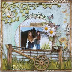 Country Life **Dusty Attic Design Team**