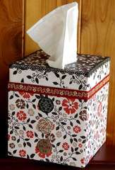 Day by Day Kleenex box