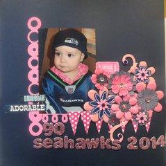Go Seahawks 2014