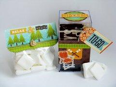 Jillibean Soup Happy Campers S'mores Kit by Mendi Yoshikawa