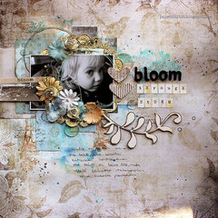 Bloom Through Storm