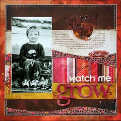 *Watch Me Grow* NEW BasicGrey INDIAN SUMMER