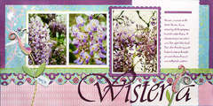 *Wisteria* BG Newsletter June '08