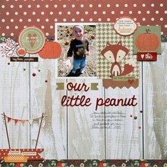 Our Little Peanut **Simple Stories DT**