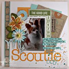 My Scoutie Boy {Memory Box}