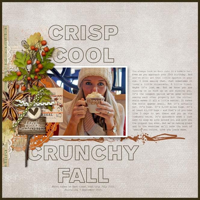 http://cdn.scrapbook.com/gallery/cache/91/915891/CrispCoolCrunchyFall800_1.jpg
