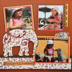 Zoo Elephants - LHP