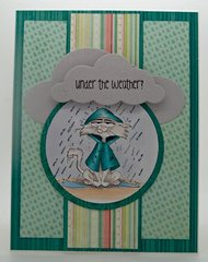 Grouchy Kitty Card by DT Member Eva