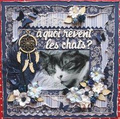 A quoi rêvent les chats?