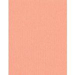 Bazzill Basics - 8.5 x 11 Cardstock - Mono - Coral Cream