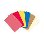 Becky Higgins - Project Life - Kraft Collection - 4 x 6 Textured Cardstock Cards - Box of 60