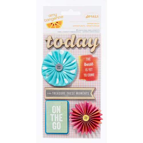 American Crafts - Amy Tangerine Collection - Yes, Please - Details - 3 Dimensional Stickers - Opportunity