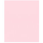 Bazzill Basics - 8.5 x 11 Cardstock - Canvas Texture - Petalsoft