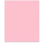 Bazzill Basics - 8.5 x 11 Cardstock - Canvas Texture - Romance