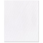 Bazzill - 8.5 x 11 Wedding Cardstock - White Wedding Satin